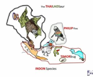 Learn the Map of South East Asia