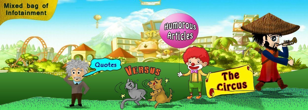 The Circus Featured Image