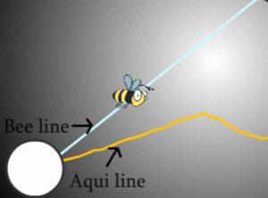 Beeline and Aquiline