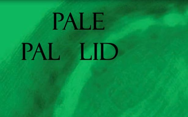 Pallid Meaning