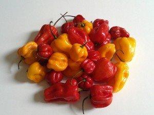 Adjuma pepper