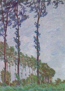 Poplars (Wind effect)