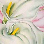 Two Calla Lilies on Pink (1928) - Georgia O'Keeffe