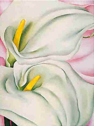 Two Calla Lilies on Pink (1928) - Georgia O'Keeffe