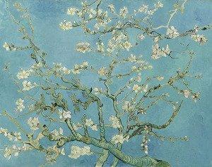 Almond Blossom - Vincent Van Gogh