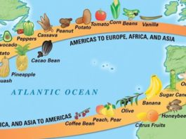 Columbian Exchange Facts Featured