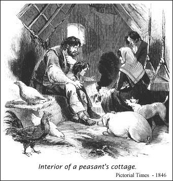 Illustration of a peasant's cottage