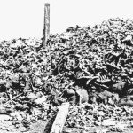 Battle of Verdun Human Remains