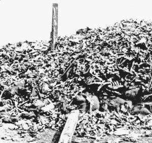 Battle of Verdun Human Remains