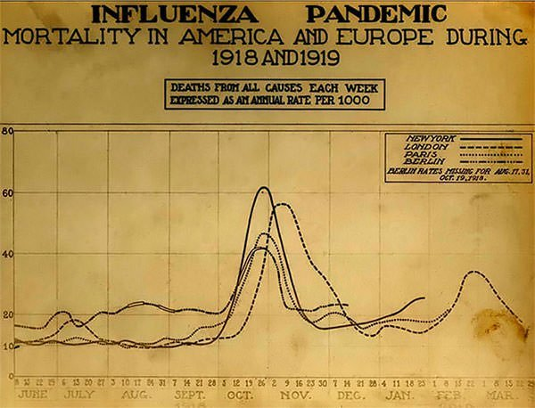 Spanish flu 10 facts about the 1918 influenza pandemic learnodo death chart of spanish flu ccuart Image collections