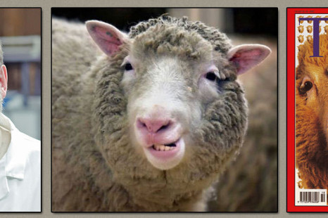 10 Interesting Facts About Dolly The Cloned Sheep