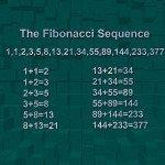 Fibonacci Facts Featured
