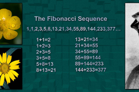 10 Facts On Leonardo Fibonacci And The Fibonacci Sequence