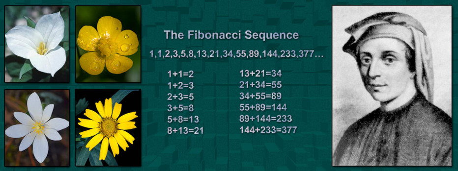 leonardo fibonacci biography Leonardo of pisa, or leonardus pisanus, usually called fibonacci (from filius bonacci), an italian mathematician of the 13th century of his personal history few particulars are known his father was called bonaccio, most probably a nickname with the ironical meaning of a good, stupid fellow .