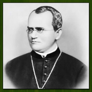 Gregor Mendel | 10 Facts On The Father of Genetics
