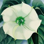 Jimson Weed, White Flower No. 1 (1932) - Georgia O'Keeffe