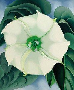 Jimson Weed, White Flower No. 1 (1932) - Georgia O'Keeffe