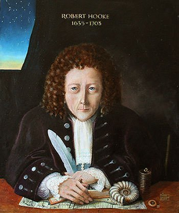 robert hooke facts for essay