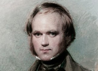 Charles Darwin Accomplishments Featured