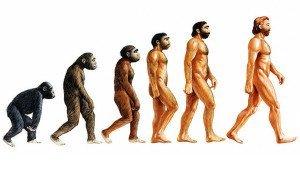 Depiction of evolution of man
