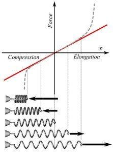 Hooke's Law Graph
