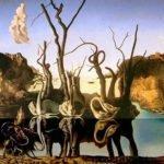 Swans Reflecting Elephants (1937) - Salvador Dali