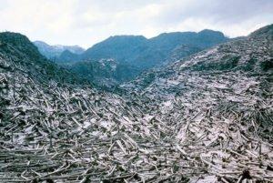 Mount St. Helens destruction