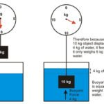 Archimedes' Principle diagram