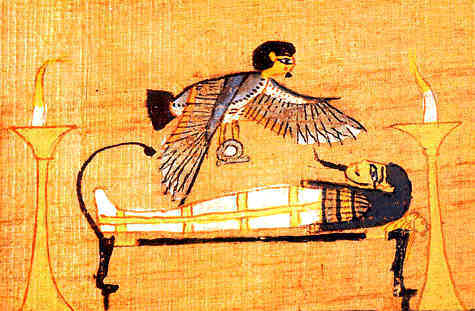 Ba over a mummy in a tomb