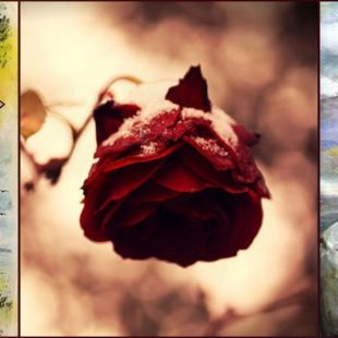 10 Most Famous Short Poems By Renowned Poets