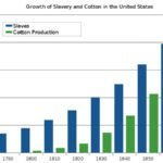 Graph of slave population and cotton production in U.S.
