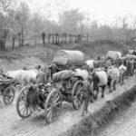 Serbian army retreat in World War 1