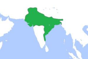 Gupta Empire Map